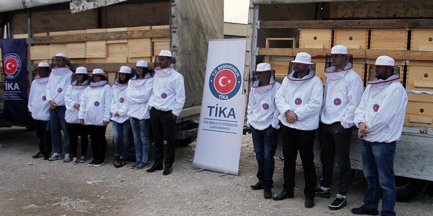 TİKA Sırbistan'da arıcılığı geliştiriyor