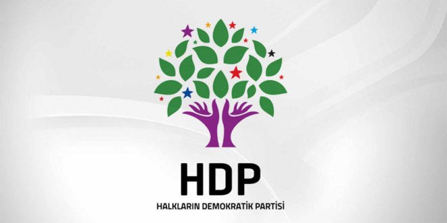 HDP Şanlıurfa İl Eş Başkanı Sürücü gözaltına alındı