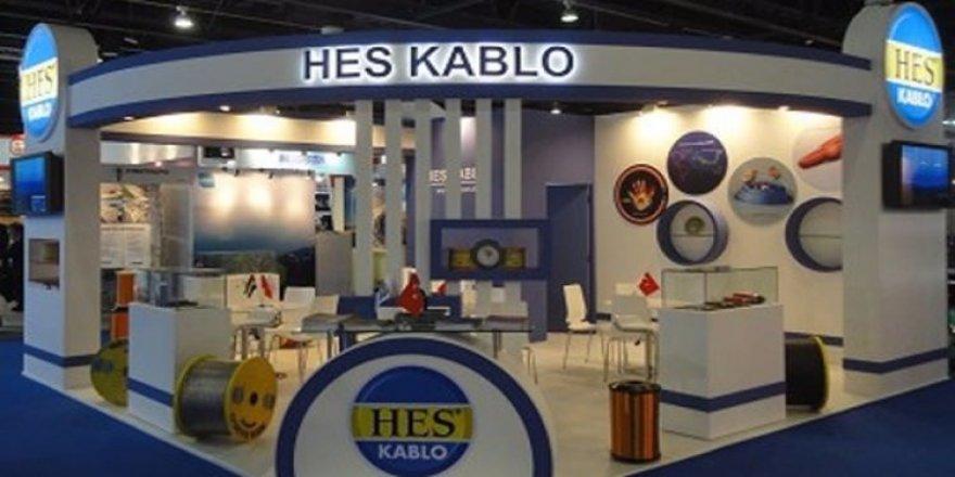 HES Kablo, TMSF'ye devredildi