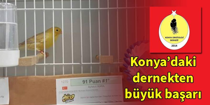 Konya Ornitoloji Derneği'nden İzmir'de büyük başarı