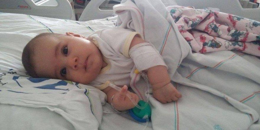 2 buçuk aylık Türkmen bebeğe hayırsever sahip çıktı