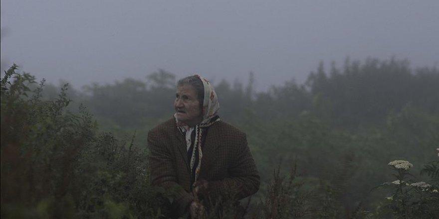'Kalandar Soğuğu' Amerika yolcusu