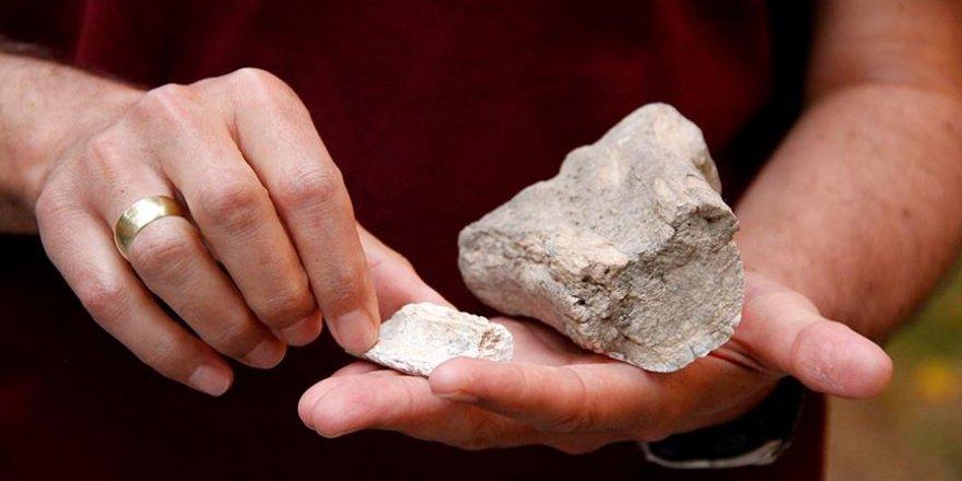 Kayseri'de 10 milyon yıllık zürafa izleri