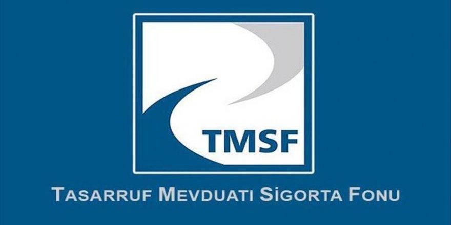 11 şirket TMSF'ye devredildi