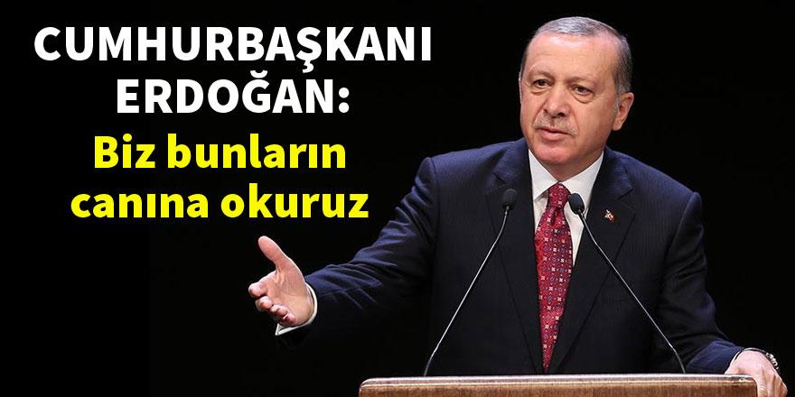 Cumhurbaşkanı Erdoğan: Biz bunların canına okuruz