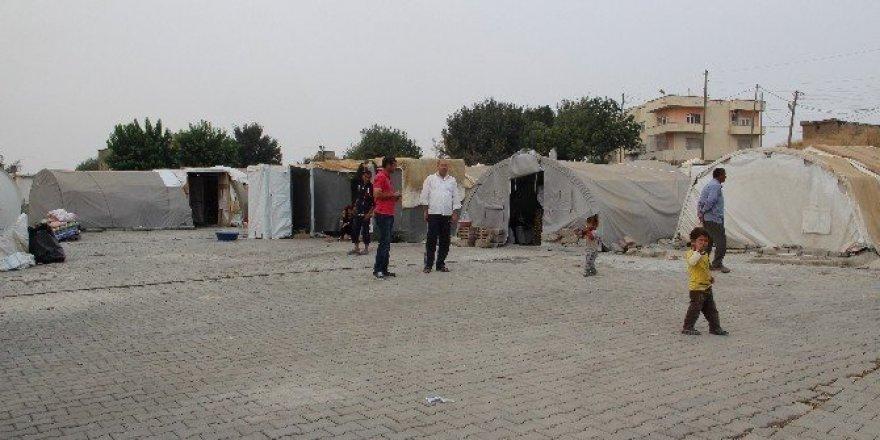 DEAŞ zulmünden kaçan Yezidiler Irak'a dönmek istemiyor