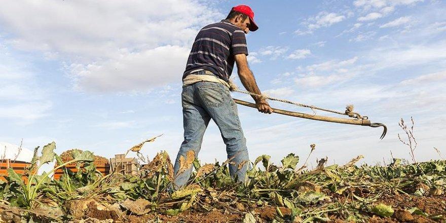 Çiftçilere 640 milyon liralık destek ödemesi yarın yapılacak