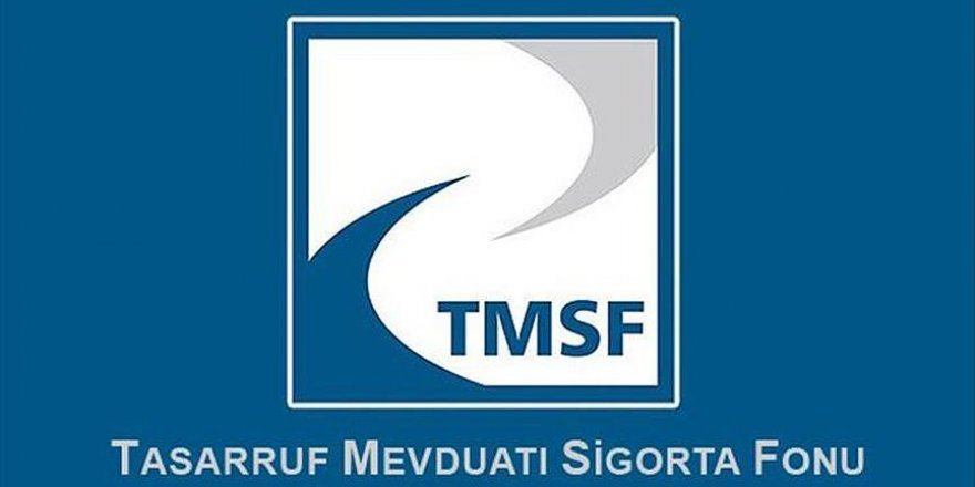 TMSF'nin yabancı bir şirkete el koyduğu iddiaları