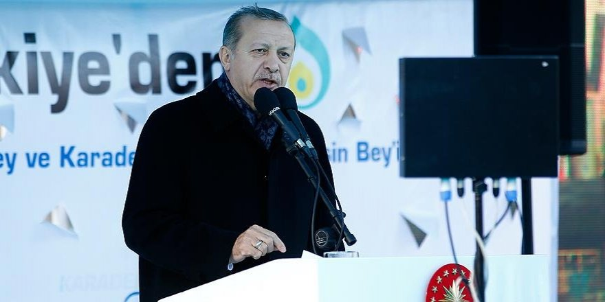 Erdogan calls on Turkish entrepreneurs to invest