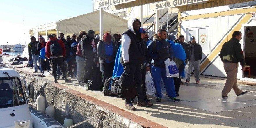 Ayacık sahilinde 46 kaçak göçmen yakalandı