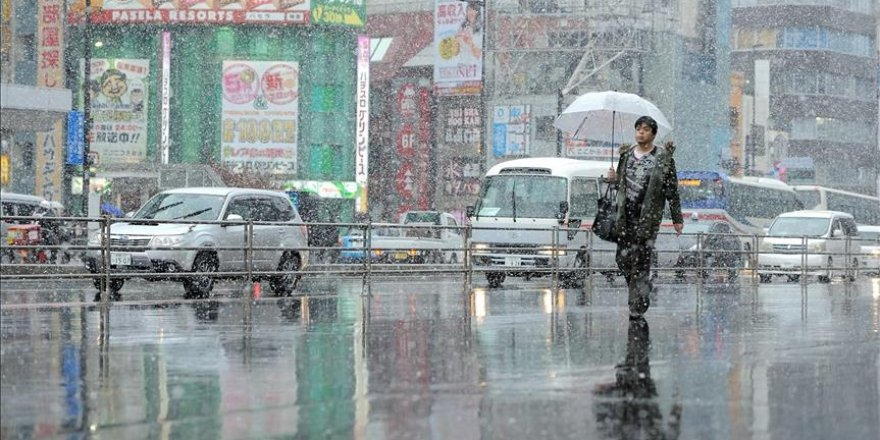 Tokyo sees first November snow accumulation since 1875