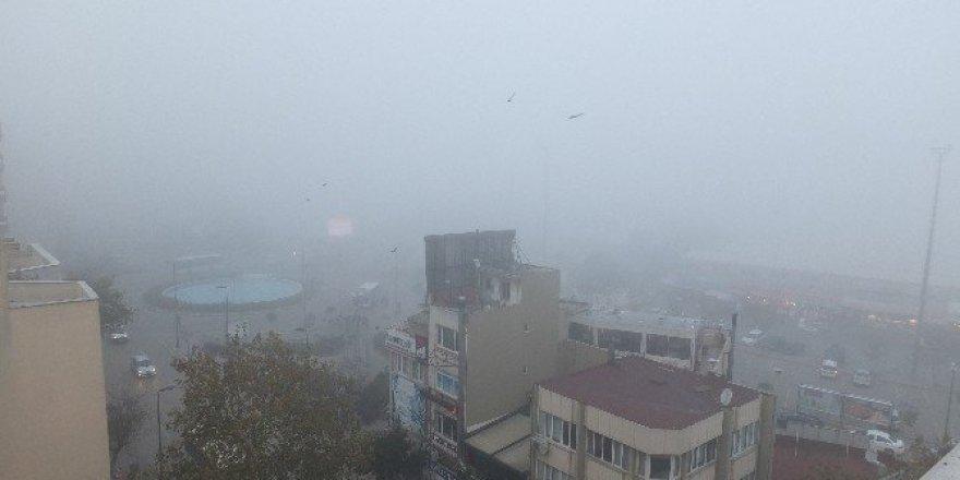 Bandırma'da yoğun sis