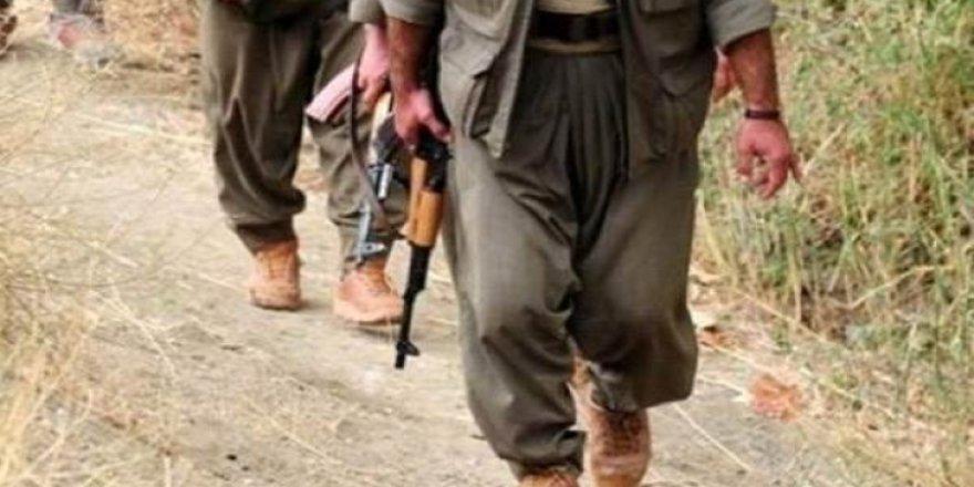 Batman'da PKK propagandası yapan 14 kişi gözaltına alındı