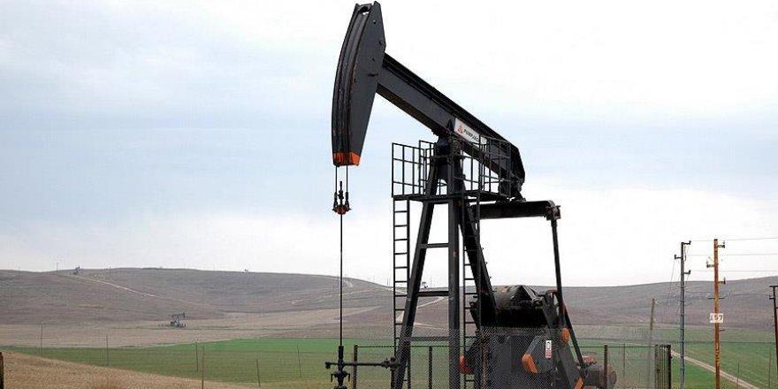 TPAO'nun Siirt ve Batman'daki petrol işletme ruhsatı uzatıldı