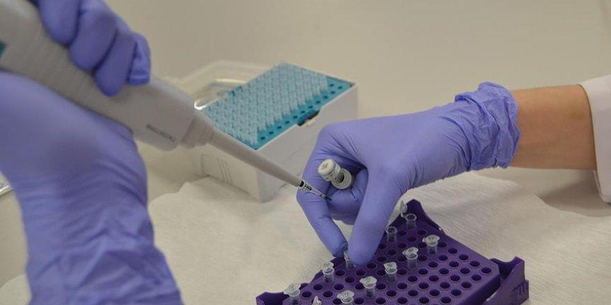 Akciğer kanserine karşı yerli genetik tanı kiti üretildi