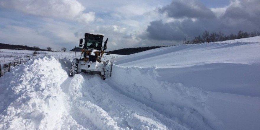 Ordu'da kar yağışı etkili oldu