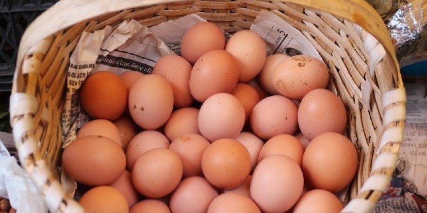 1 TL'ye 1 yumurta
