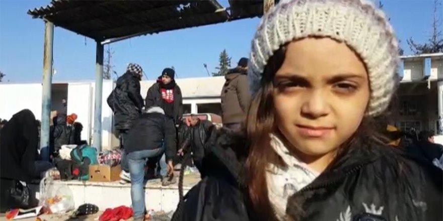 Halepli minik Bana kurtarıldı