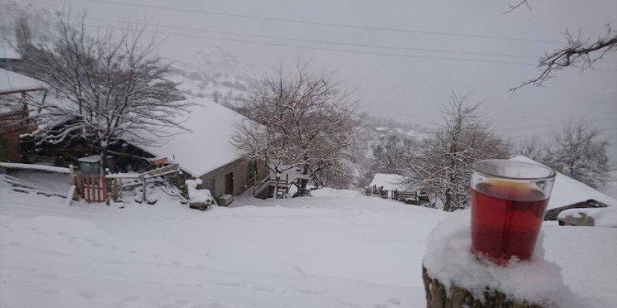 Adana'nın kuzey ilçeleri kara teslim