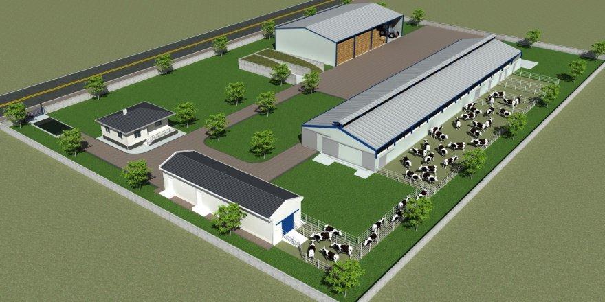 Hayvancılık yatırımlarına proje desteği