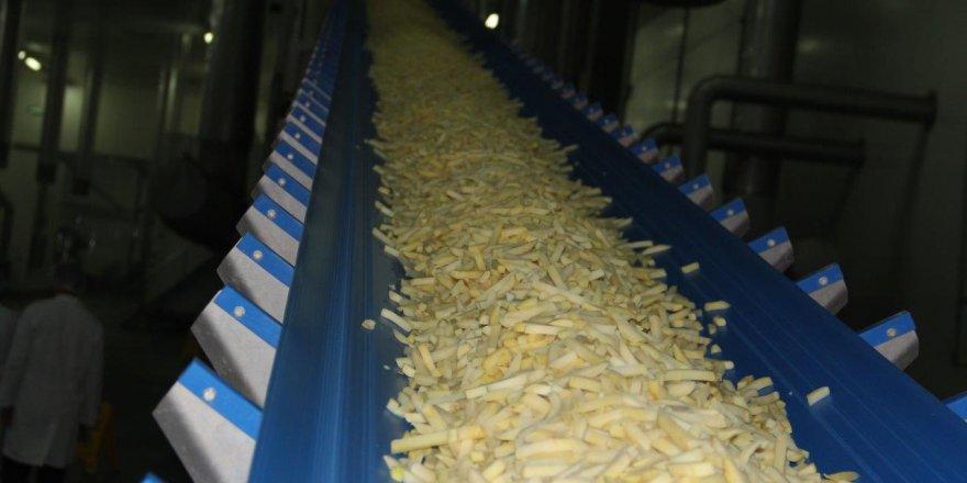 Konya Şeker, patates üreticisinin yüzünü güldürdü