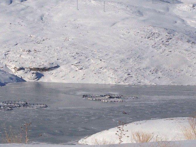 Sibirya soğukları Zernek Barajını dondurdu