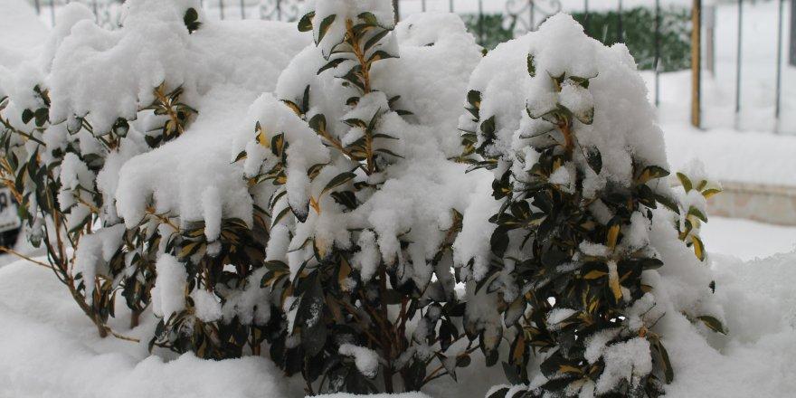 Konya ve çevresine kuvvetli kar yağışı uyarısı