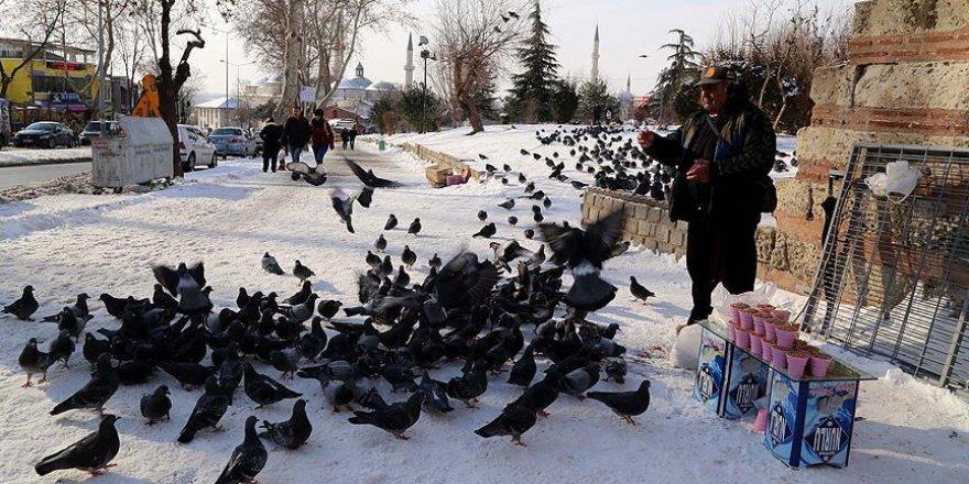 Güvercinleri 'sermayeden' doyuruyor