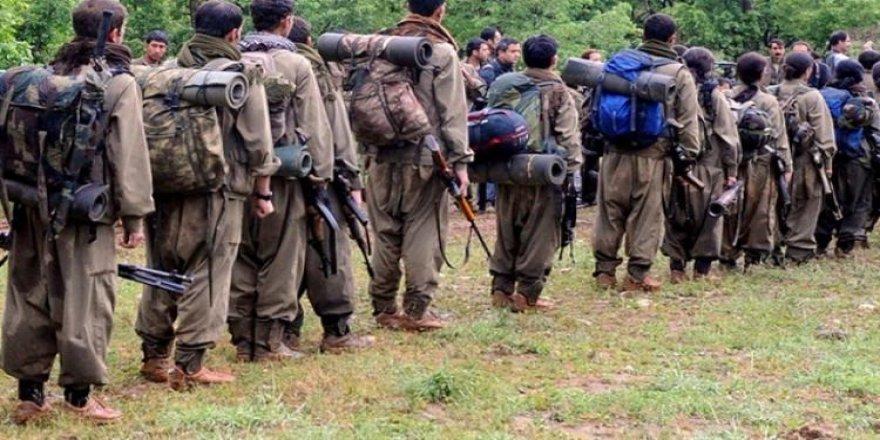 CIA raporunda PKK sansürü!