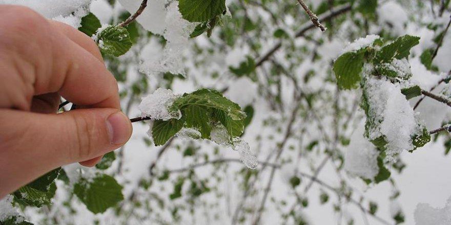 Meteorolojiden 5 ilde buzlanma ve don uyarısı