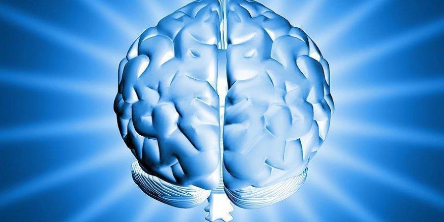 Tek bir hatıra için beynin uzak bölgelerini harekete geçiyor