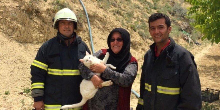 Afacan kediyi itfaiye kurtardı