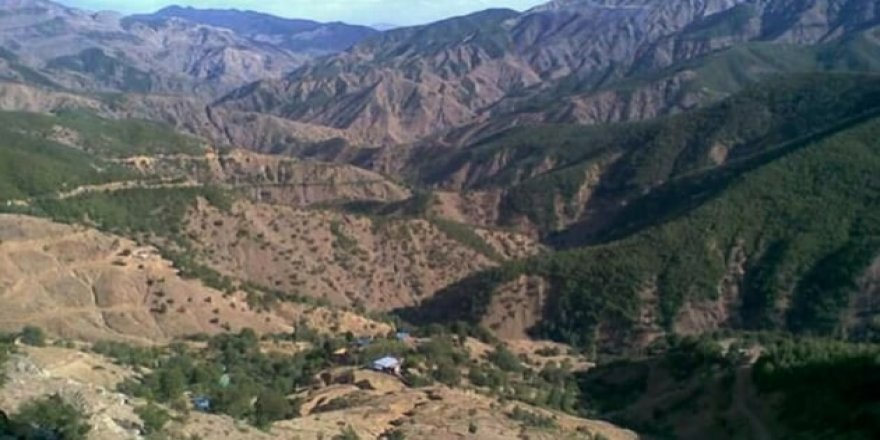 Savcılık talimatı verdi, PKK'nın dolarları cayır cayır yakıldı