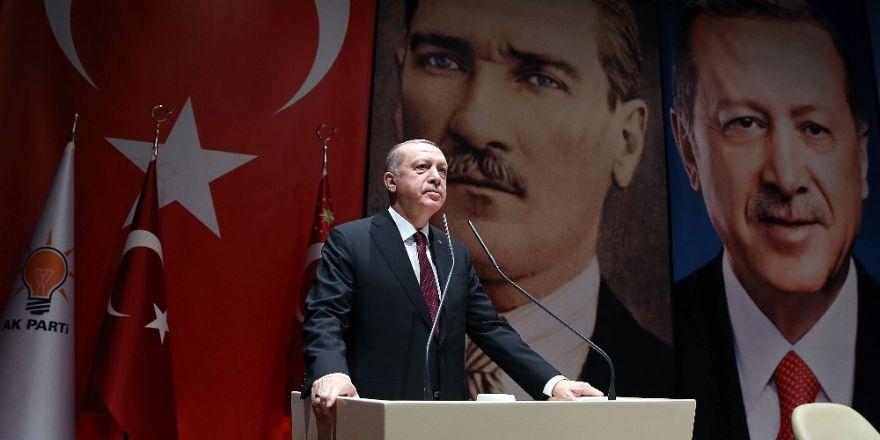 "Erdogan : L'opération ""Rameau d'olivier"" inclura Manbij"