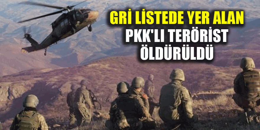 Gri listede yer alan PKK'lı terörist öldürüldü