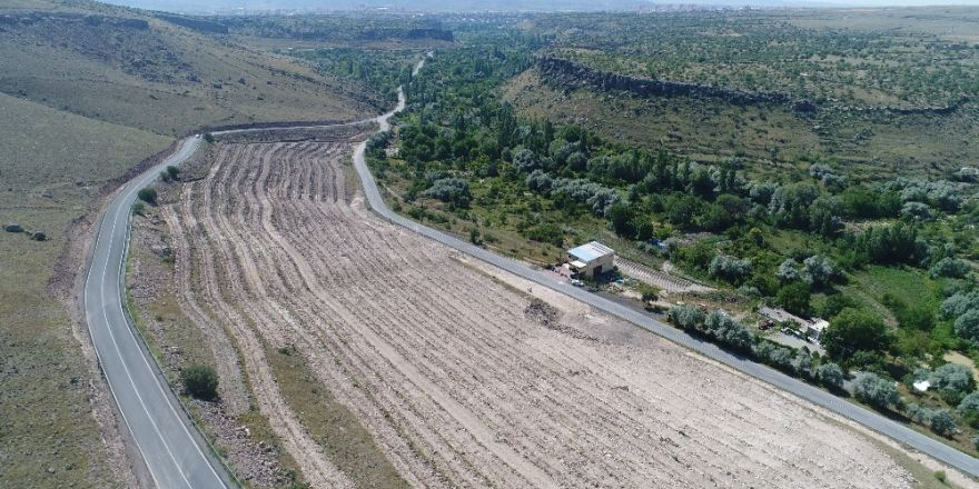 """Başkan Karayol, """"Yeşillendirme çalışmalarına önem veriyoruz"""""""