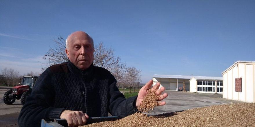 Buğday ve çeltik fark destekleri yatırılıyor