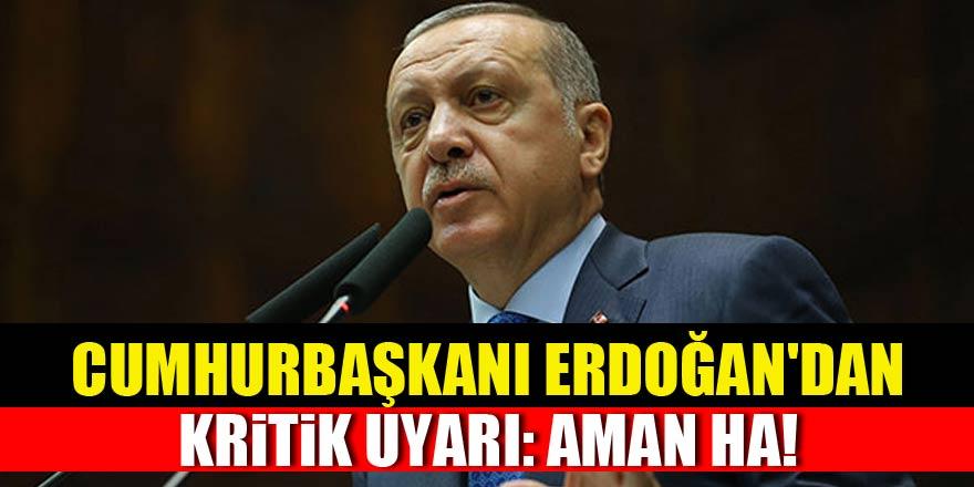 Cumhurbaşkanı Erdoğan'dan kritik uyarı: Aman ha!