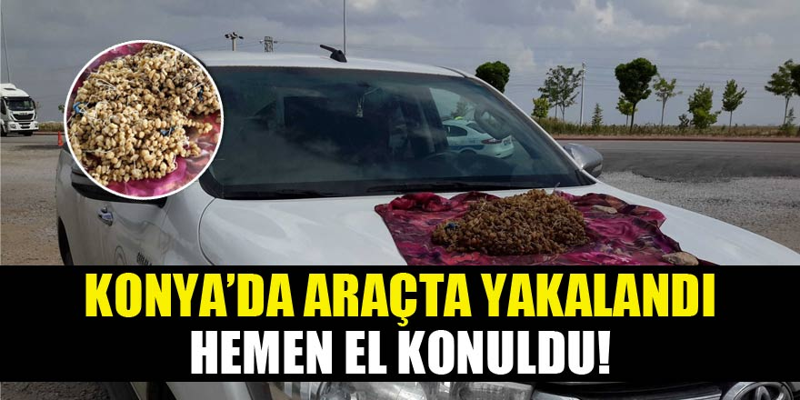 Konya'da ele geçirildi