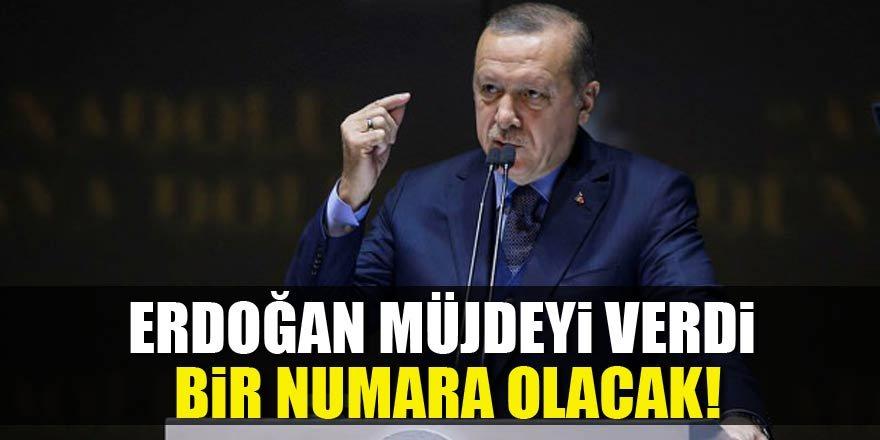 Cumhurbaşkanı Erdoğan: Bir numara olacak!
