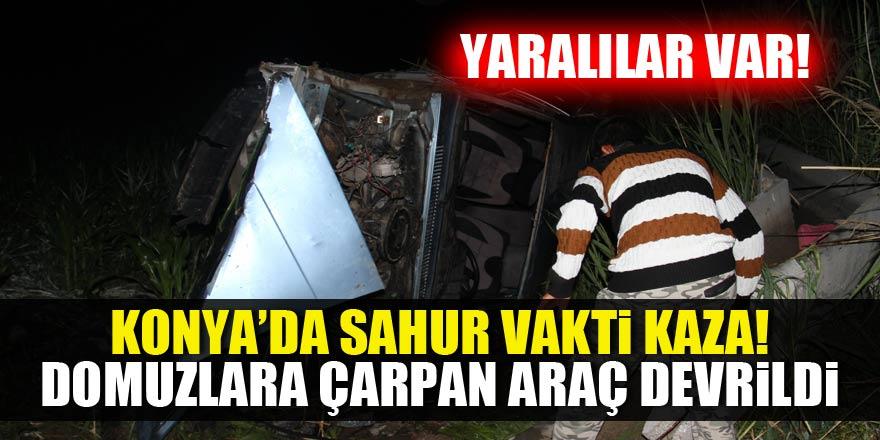 Konya'da yaban domuzu kazaya sebep oldu