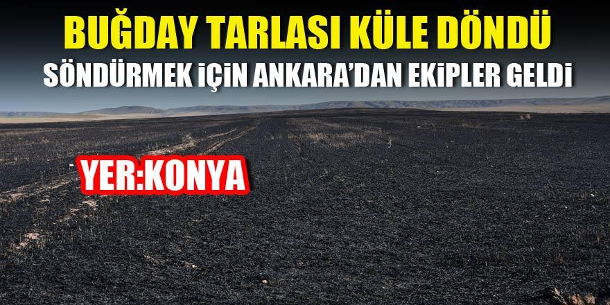 Buğday tarlası küle döndü! Konya'da korkutucu yangın