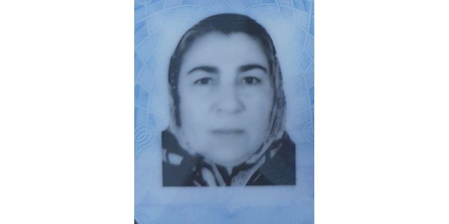 Bursa'da keçi otlatırken yıldırım çarpan kadın hayatını kaybetti