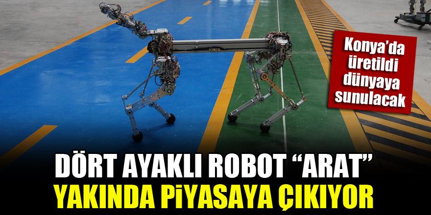 """Konya'da üretildi, dünyaya sunulacak! Dört ayaklı robot """"ARAT"""" yakında piyasaya çıkıyor"""