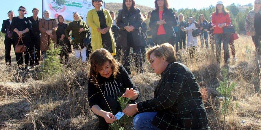 MHP Kadın Kolları fidanları toprakla buluşturdu