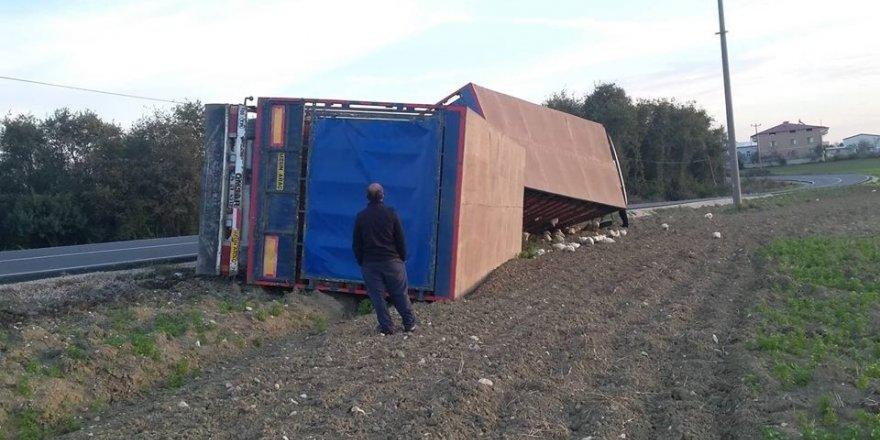 Sakarya'da canlı tavuk yüklü kamyon devrildi