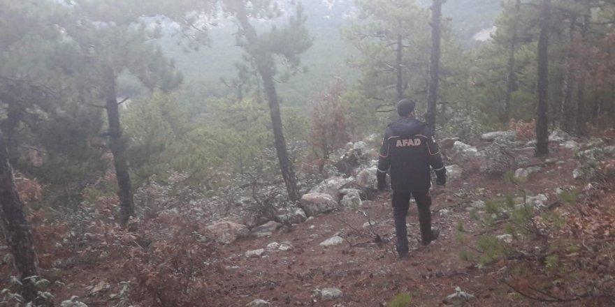 Avlanmak için evinden çıkan avcı ormanlık alanda ölü bulundu