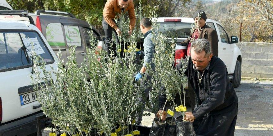 Mersin'de tarıma belediye desteği