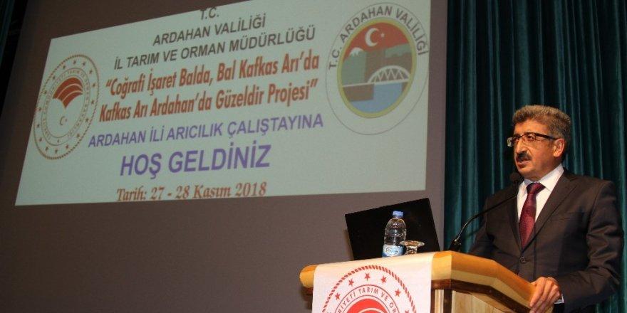 Arıcılık çalıştayı Ardahan'da başladı