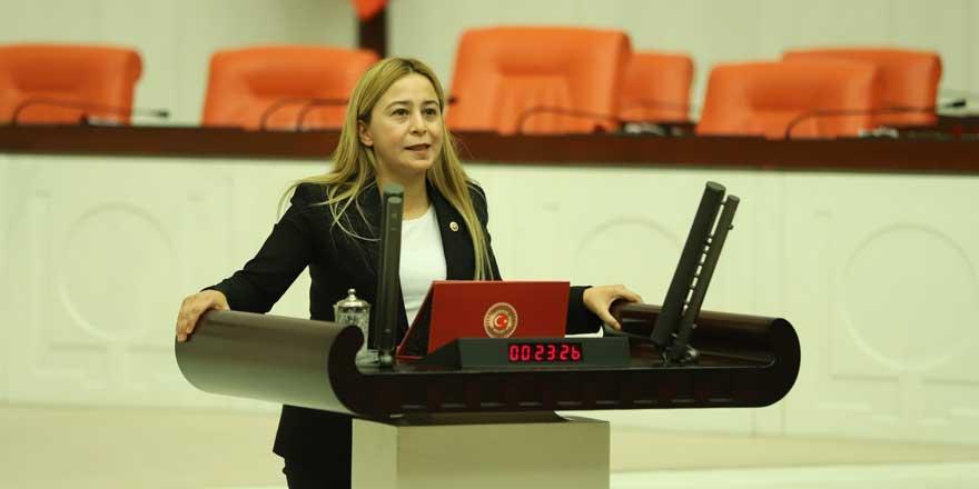 """Milletvekili Esin Kara: """"Konya havzası çölleşiyor"""""""